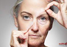 Prevention of wrinkles (2)